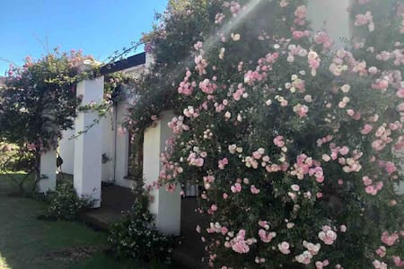 1Gino, luxury & comfort in Clarens