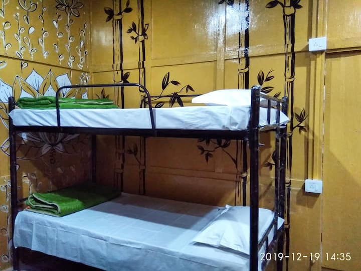 Backpackers Haven bunk bed 6