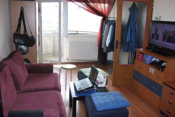 Cozy apart close to the center - Bukarest - Wohnung