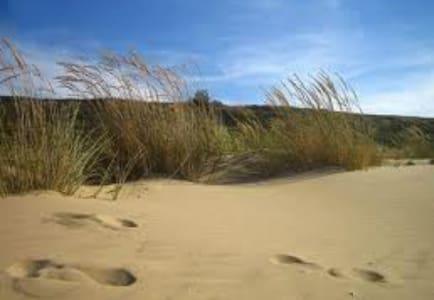 Appartamento sulle dune