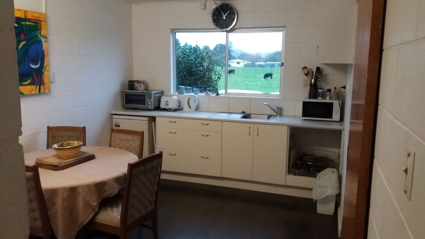 kitchen with a fridge , portable grill/oven ,portable hotplate and microwave. Bbq outside.