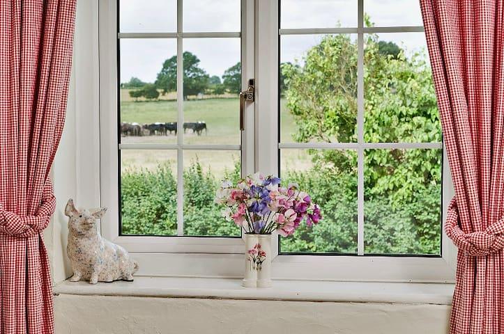 Beautiful views from bedroom windows