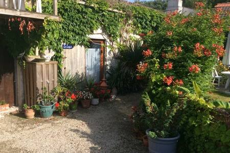 Barn conversion sleeps 7 - St just Luzac