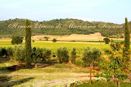 Casa Vacanze Il Girasole - Agriturismo Il Bagnolo