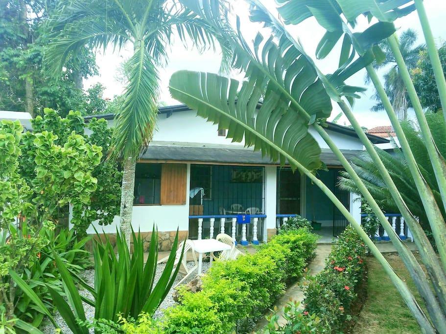 Jardín tropical exclusivo