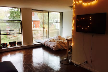 Cozy, light-filled apartment in Brookline - Brookline - Apartment