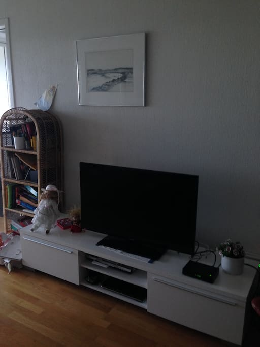 Cable-TV