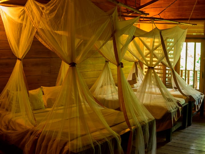 Habitación Cuádruple - On Vacation Amazon