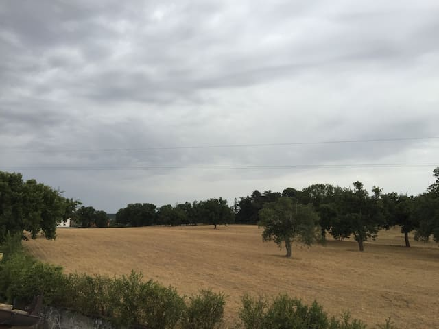 Appartamento nel verde sulla via Francigena - Vetralla - Leilighet
