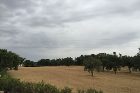 Appartamento nel verde sulla via Francigena - Vetralla