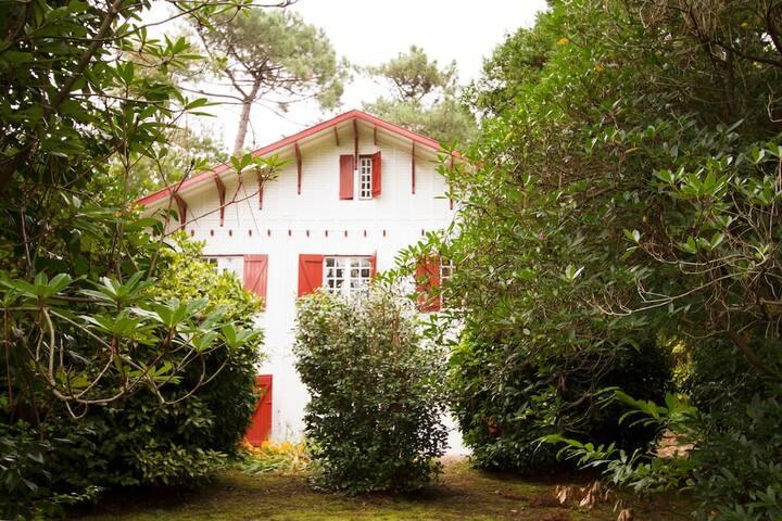 Un Jardin à Biarritz bis