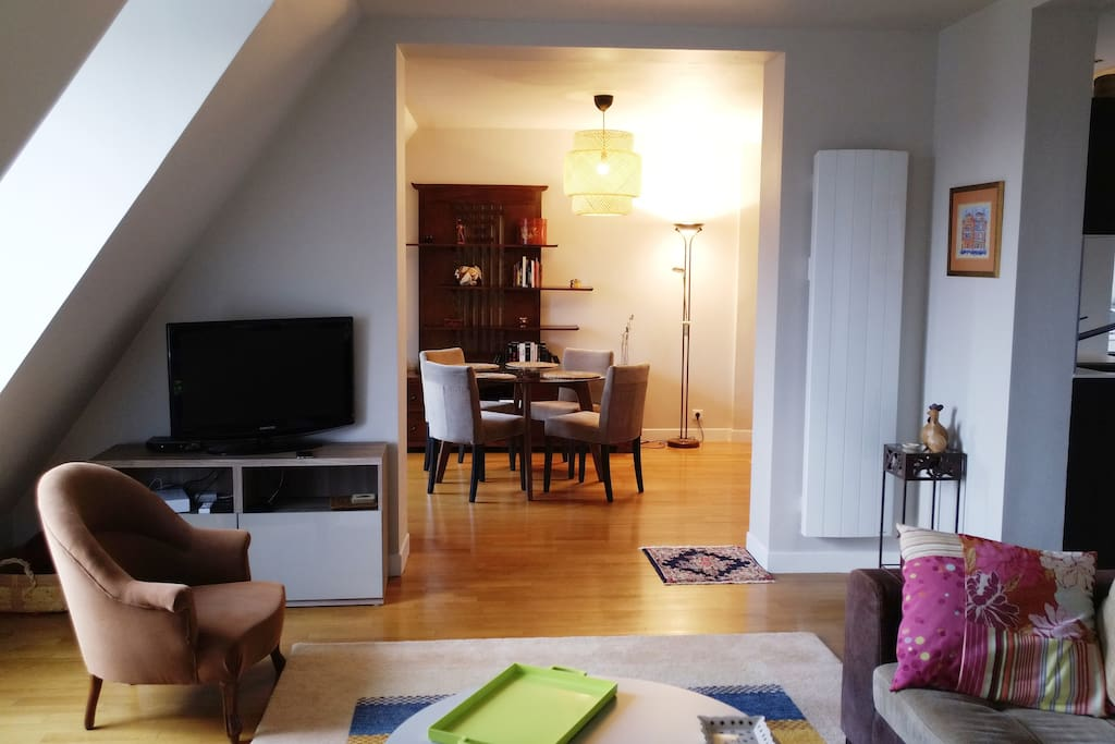 Large living room (40m2) with unobstructed views of the Quai Branly Jacques Chirac museum