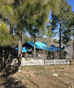 Blue Cottage, near Jim Corbett (2 hrs drive)