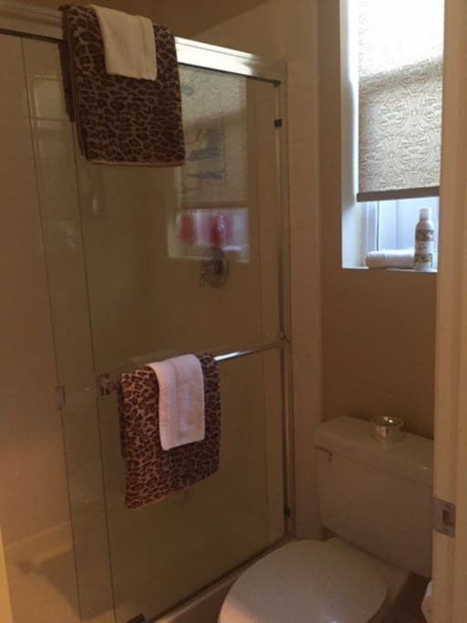Full size shower with great water pressure and private toilet.