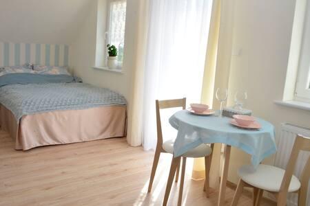 """Apartament  """"Błękitny"""" Radomice"""