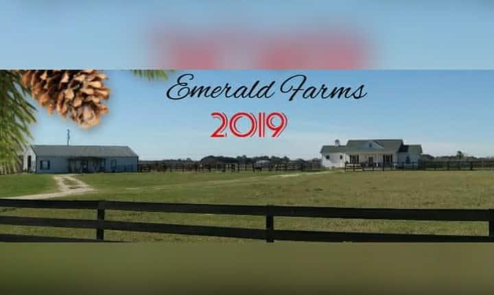 Pet/Horse friendly 2bd barnhouse @ horse farm