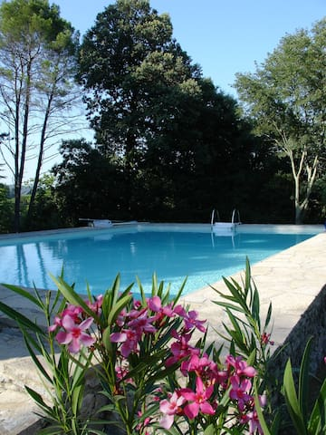 Maison de caractère  piscine tennis parc. wifi - Durfort-et-Saint-Martin-de-Sossenac - บ้าน
