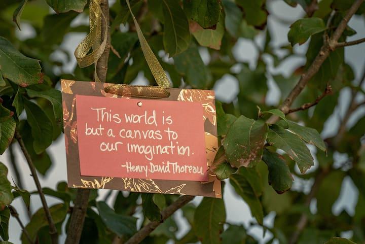 Light your imagination