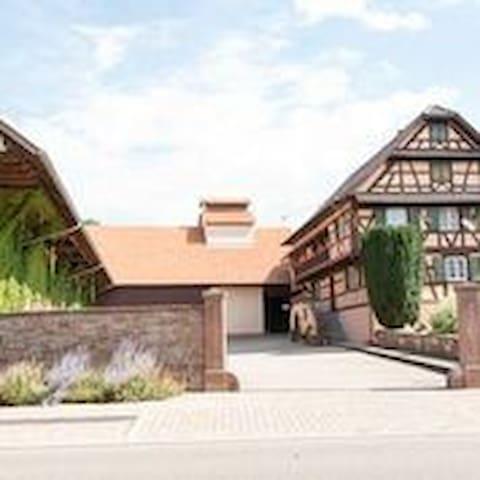 Ferme typique alsacienne - Truchtersheim - Apartment
