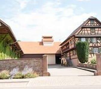 Ferme typique alsacienne - Truchtersheim - อพาร์ทเมนท์