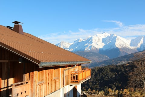 Cosy apartment in a chalet in front of Mont Blanc