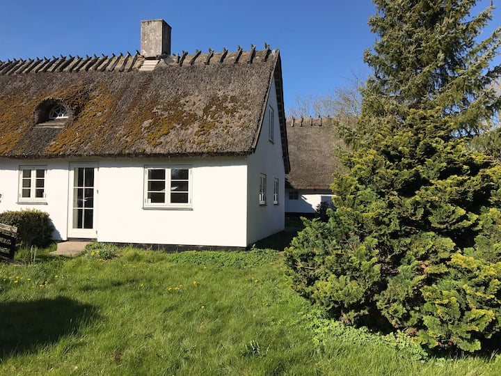 Apple Cottage,  55m2 Cosy  Modern 6 km to Tisvilde