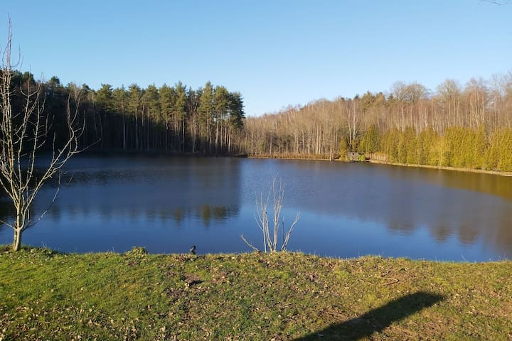 Premium Cottage in Florennes facing a private fish lake in the forest