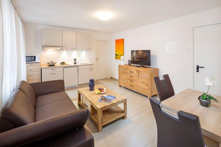 Möblierte 2.5 Zimmer Wohnung in Olten - Olten - Apartemen