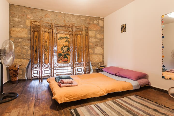 1860 historical mansion in the heart of Athens - Athina - Huis