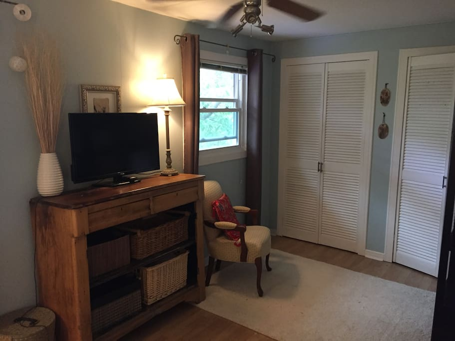 Closet area,  There is also lots of drawers and a desk area.
