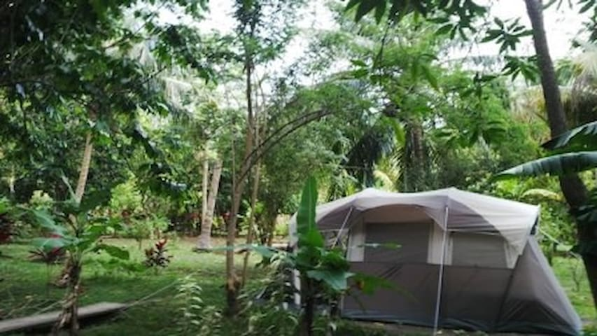 "Big Banana Campground "" Cherry"" - Soufrière - เต็นท์"