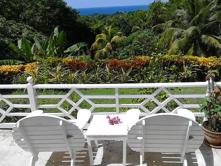 Chic Port Antonio Villa