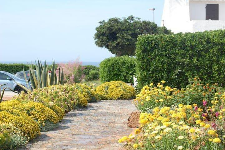 Apartamento en Cap d'Artruix (Ciutadella, Menorca) - Ciutadella de Menorca - Apartamento