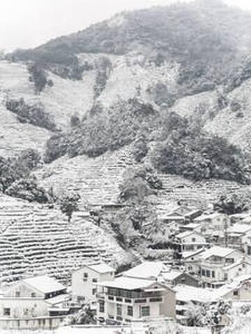 冬天周边茶山的雪景