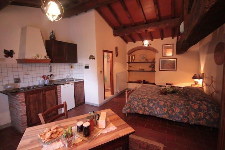 Tulipano  Monolocale  2 persone - Vaggio - Apartment