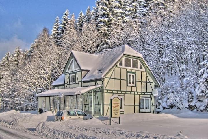 Deluxe Holiday Home in Brilon-Wald near Ski Area