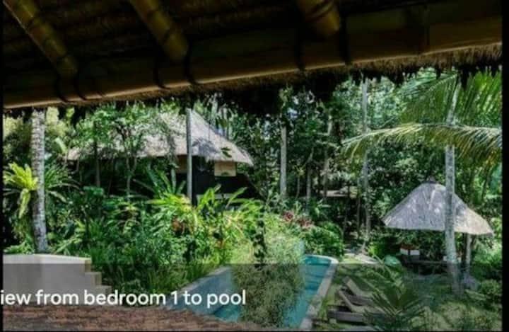 Nature House-Ubud