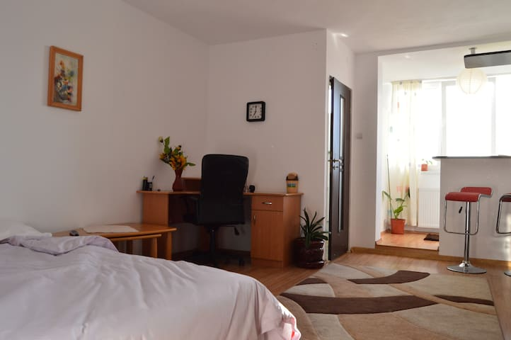 Quiet, cozy and friendly place - Cluj-Napoca - Apartment