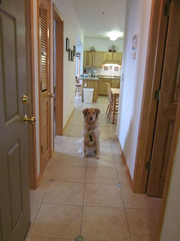 PET FRIENDLY Kill Devil Hills CONDO
