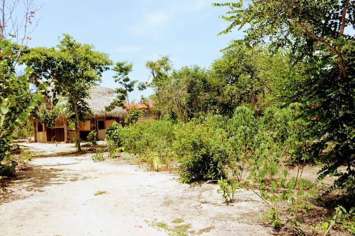 Palmento Grove Garifuna Cultural-Fishing Institute