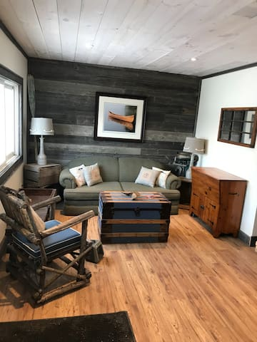 Living space with pull out couch
