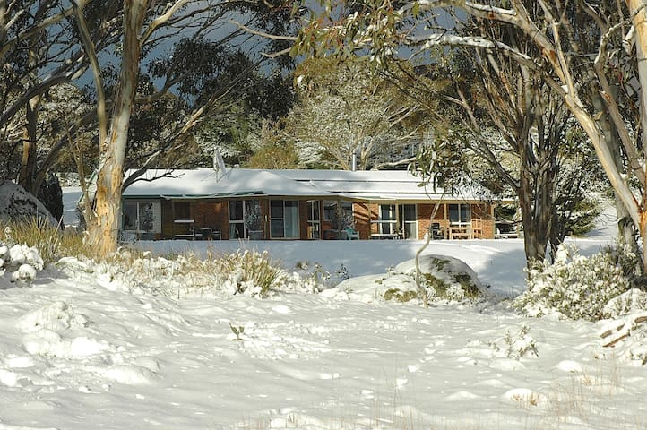 Alcheringa Alpine Retreat - Ingebirah - Bed & Breakfast
