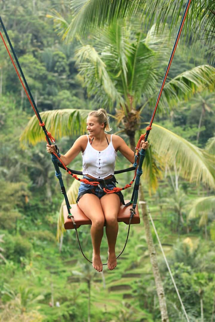 Swing over the jungle