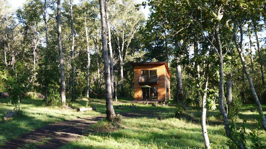 Cabaña campo Pucon