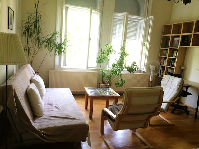 Beautiful Apt at Heroe's Square and the City Park - Budapest - Appartement
