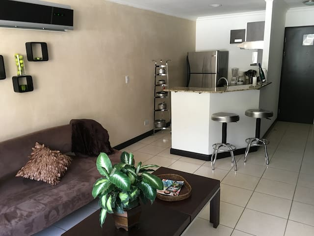 One Bedroom Condo, Avalon Country Club - Santa Ana - Departamento