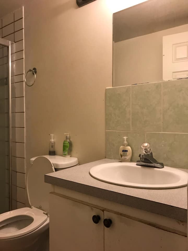 Metrotown one nice bedroom with separate entrance