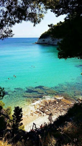 Geusthouse 1min walk from beach - Αλόννησος - Flat