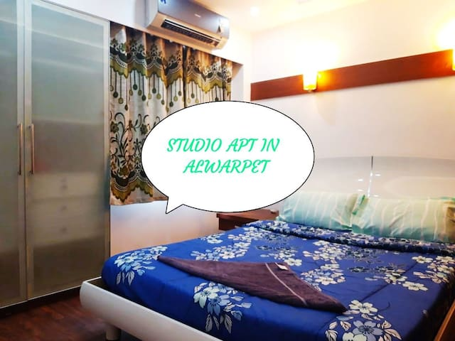 classic 1bhk studio flat at alwarpet