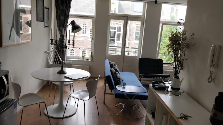 Cosy Apartment next to Westerpark